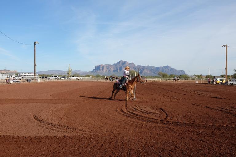 phoenix horse riding